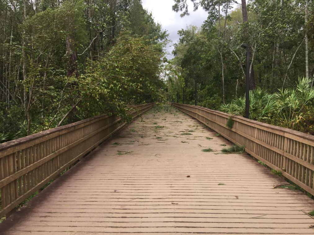 The Remaining Damage of HurricaneIrma